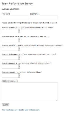 Team Performance Survey Form Example